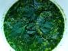 krem-z-zielonych-warzyw-02