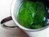 zielona-herbata-z-zielona-mieta-02