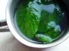 zielona-herbata-z-zielona-mieta-03